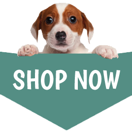 Natural Dog Treats Shop Now